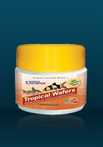 Tropical Waffers