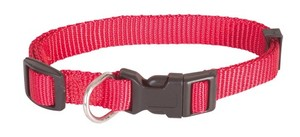 Obojek Basic Nylon - Red 1